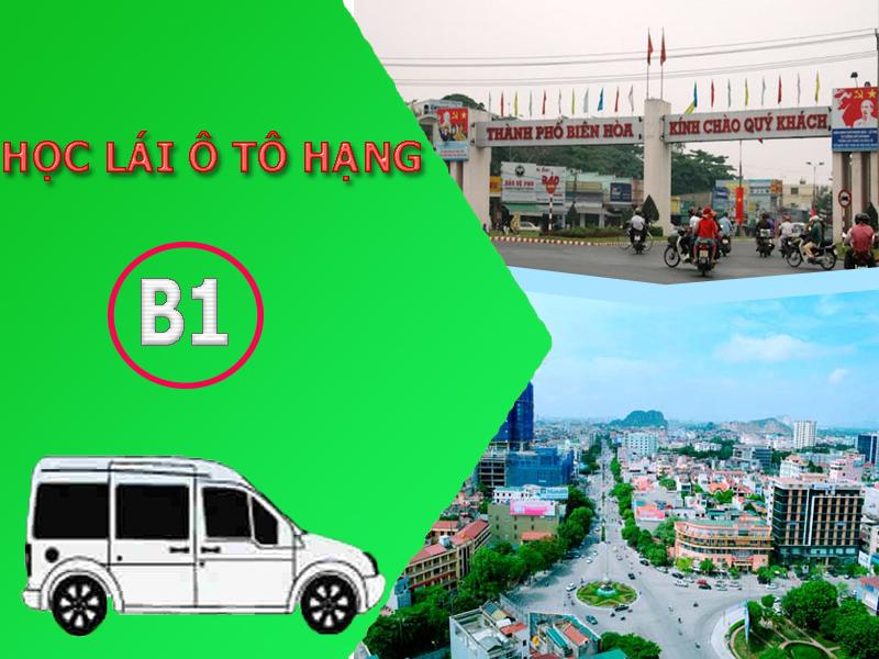 Học lái xe ô tô hạng B1 tại Thanh Hóa, Đồng Nai